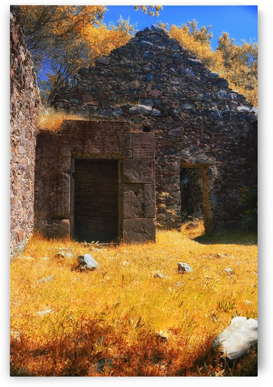 Old Assayers Vault Ruins by Frank Wilson