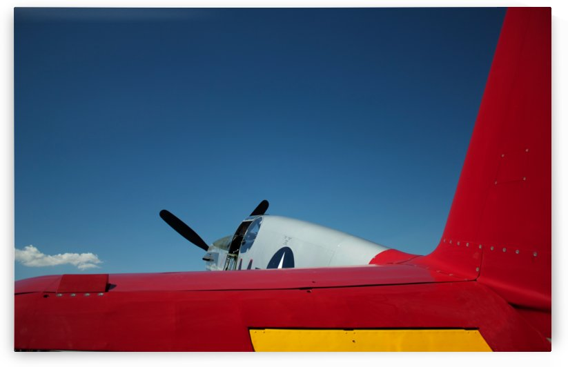 P 51 Mustang Wing by Wallshazam