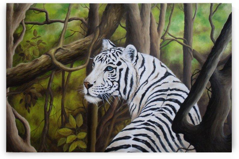 White tiger by David Drousiotis