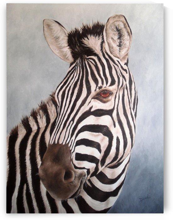 zebra by David Drousiotis