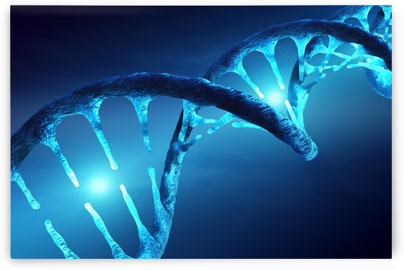 DNA structure illuminated by Johan Swanepoel