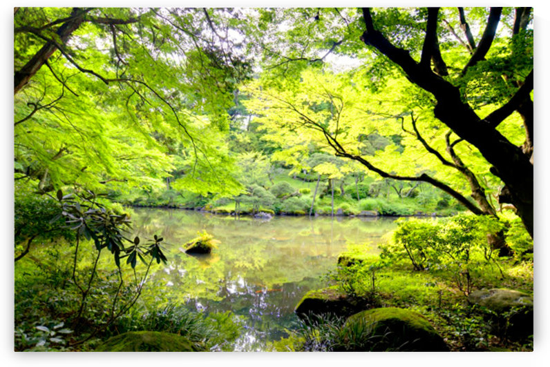 Tokyo Garden by Fabien Dormoy