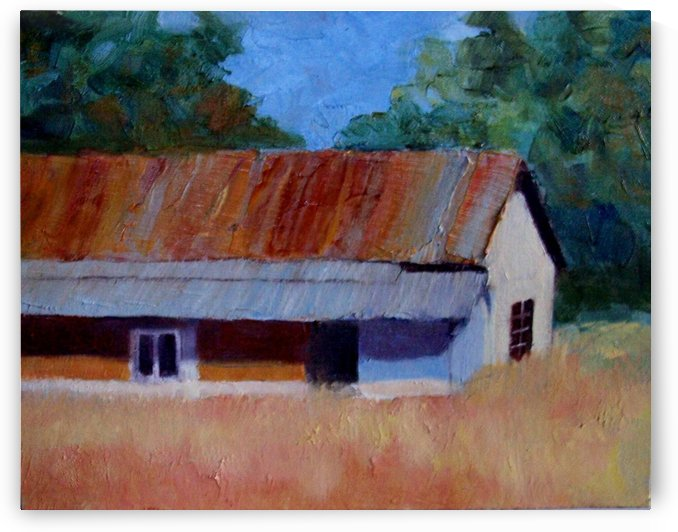 Old Shed by DONNA REIBSLAGER
