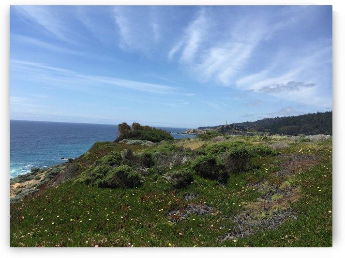 Bodega Bay by Ashden