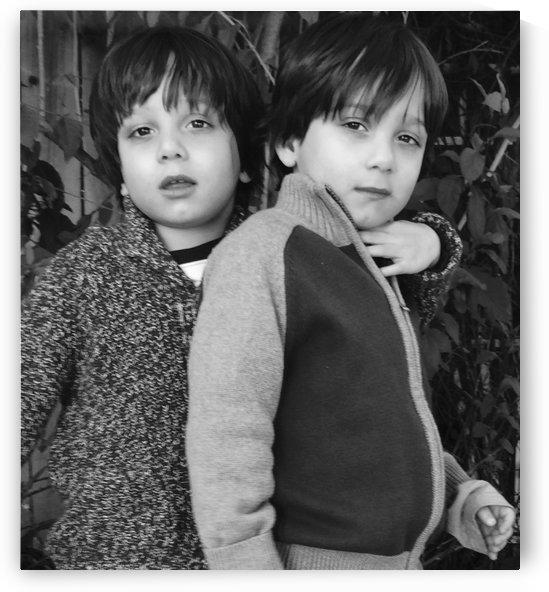 Twins  by Ashden