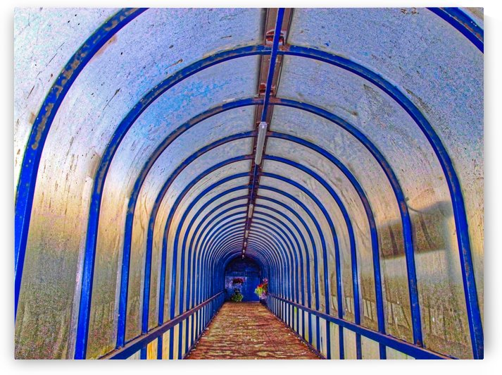 Blue perspective by Andy Jamieson