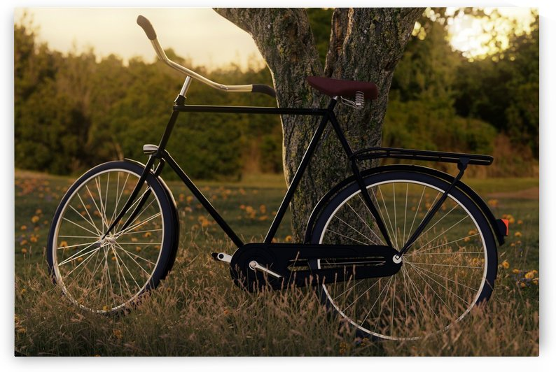 leaned black bicycle at tree by Besa Art
