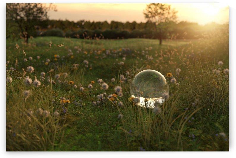 glass ball in the evening sunshine by Besa Art