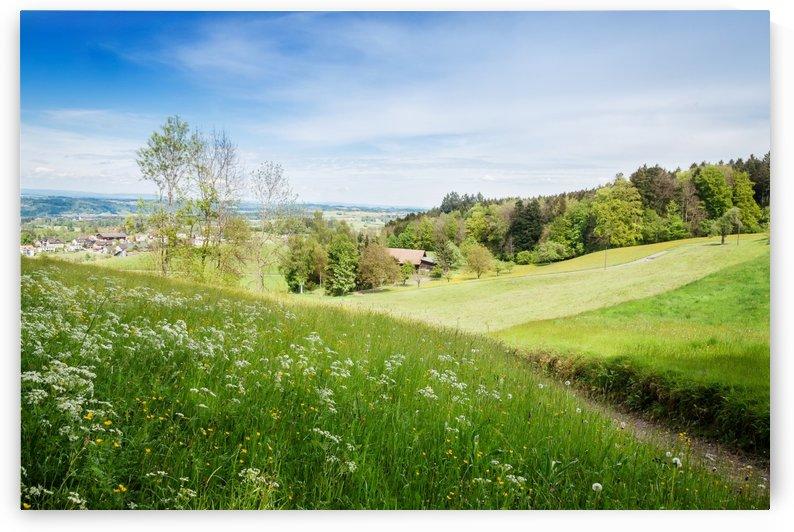 countryside switzerland by Besa Art