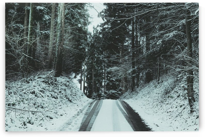 road with snow tracks into winter forest by Besa Art
