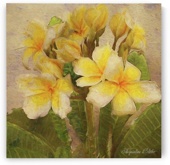 Floridian Bouquet by Jacqueline Sleter