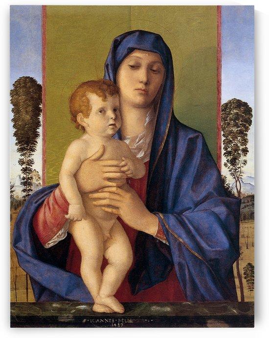 Giovanni bellini, madonna degli alberetti by Giovanni Bellini