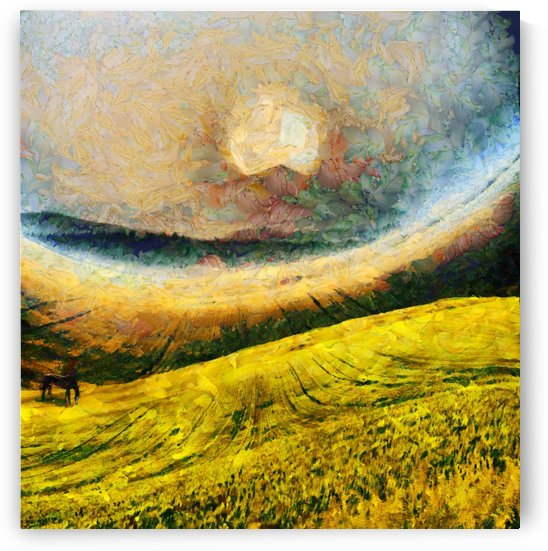 Meadow by Bruce Rolff