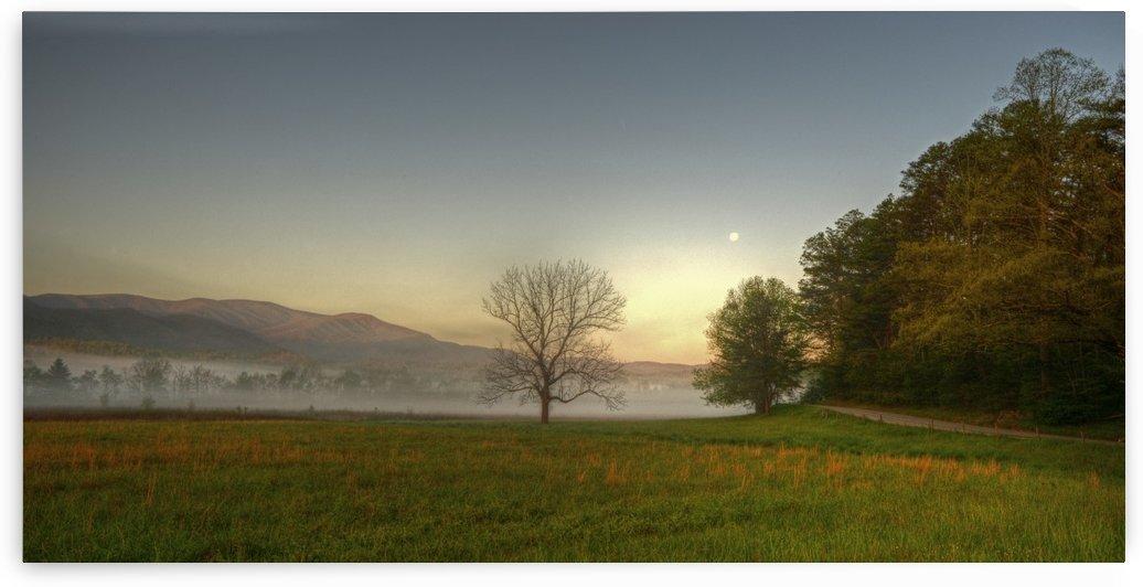 311-Morning moon by Paul Winterman