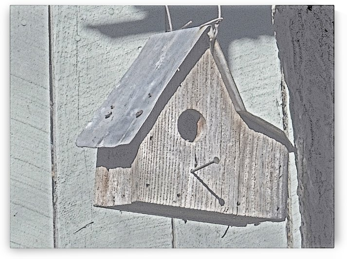 Birdhouse by Jim Jones