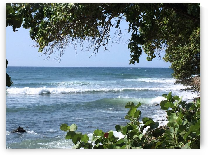 Caribbean Sea by Maria Virginia Castro