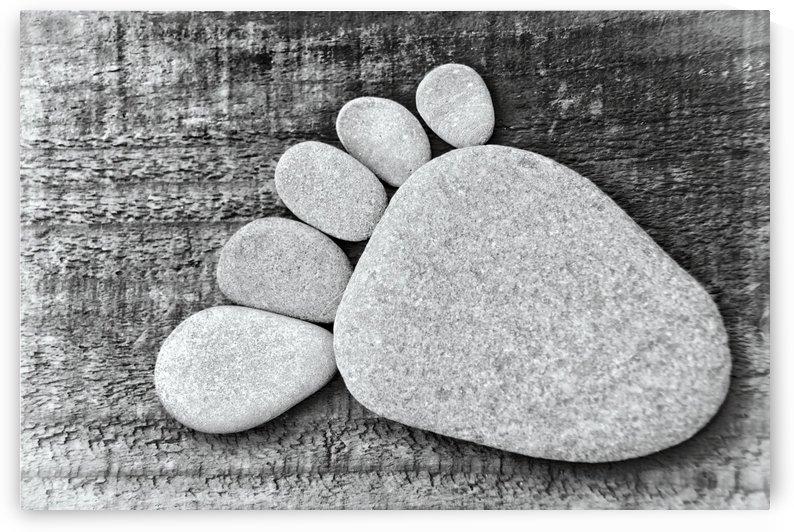 Stonefoot by Kirsten Warner