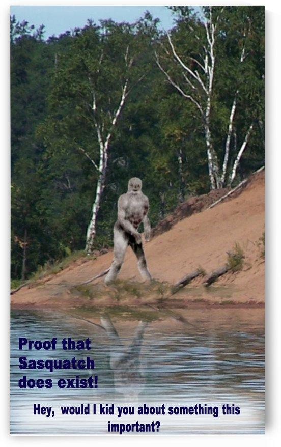 Sasquatch1 by Cheryl Barker