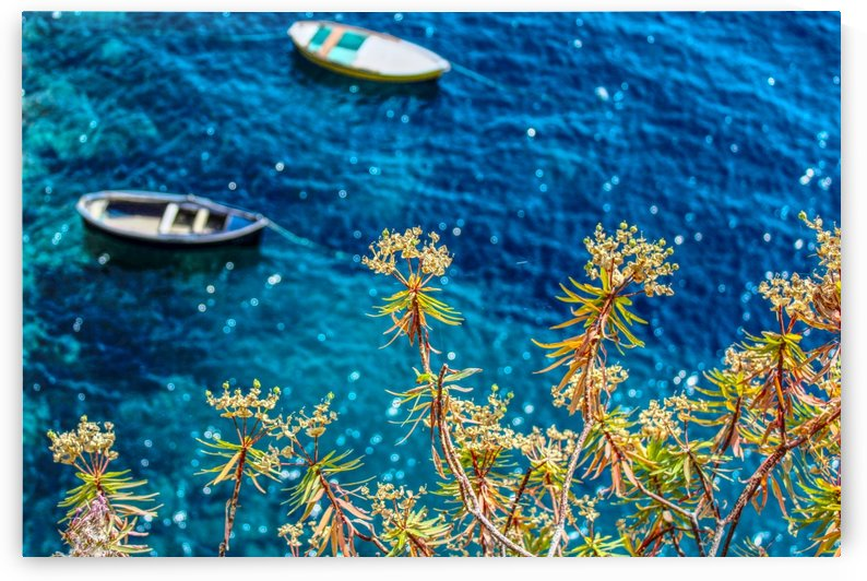 Flowers and Blue Water by Bentivoglio Photography
