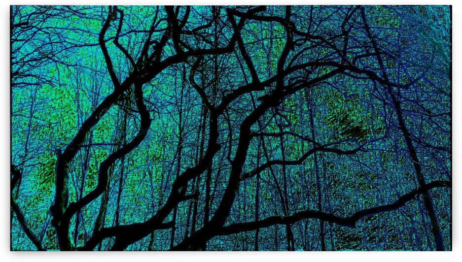 Art Branches of Greenish Blue  by Jeremy Lyman
