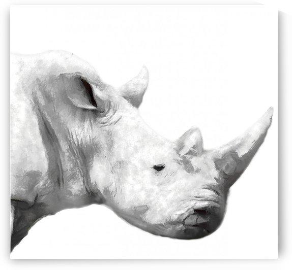 rhino BW by Yurovich Gallery
