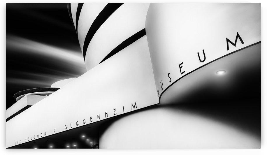 The Museum by Jackson Carvalho