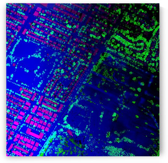LiMTL - Montreal as seen by lasers: Nouveau Rosemont by Tyler Sloan