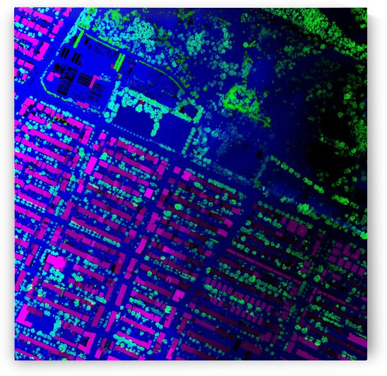 LiMTL - Montreal as seen by lasers: Parc Maissoneuve by Tyler Sloan