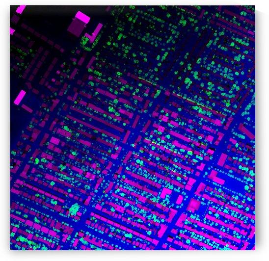 LiMTL - Montreal as seen by lasers: Beaubien by Tyler Sloan