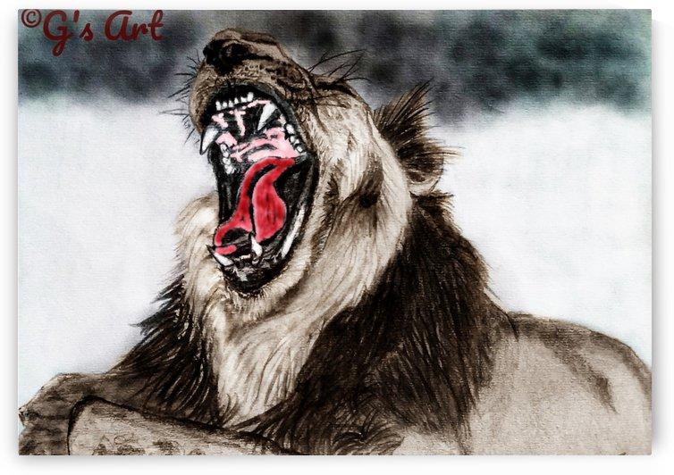 Lion yawn by Gerald Botha