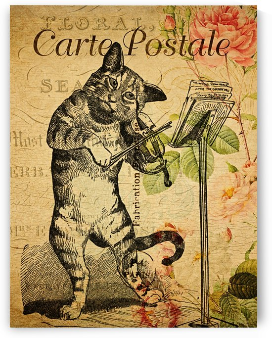 Cat Plays The Fiddle_OSG by One Simple Gallery