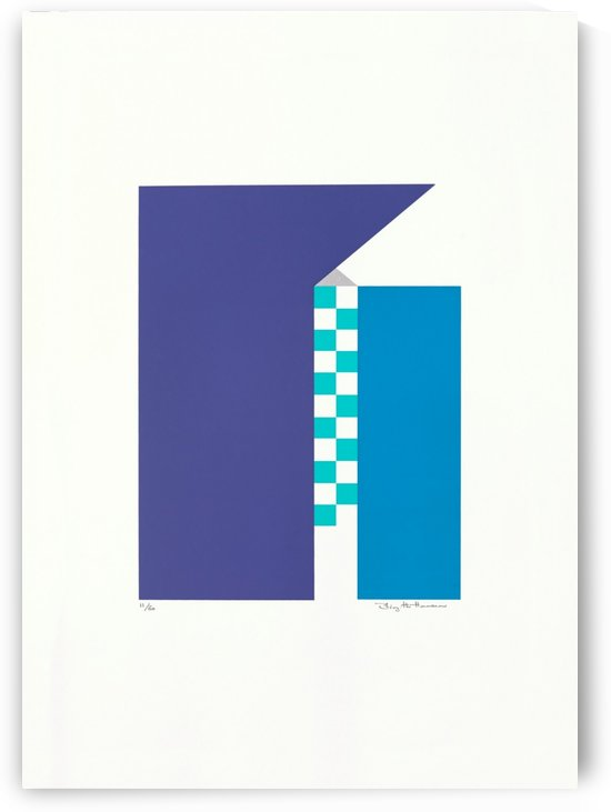 Blå Huse. by Birgitte Hansen