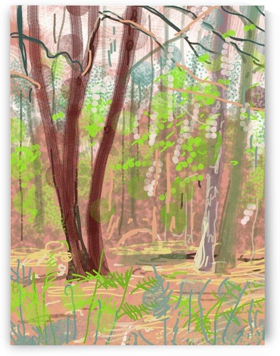 Dordogne wood by Douglas Kay