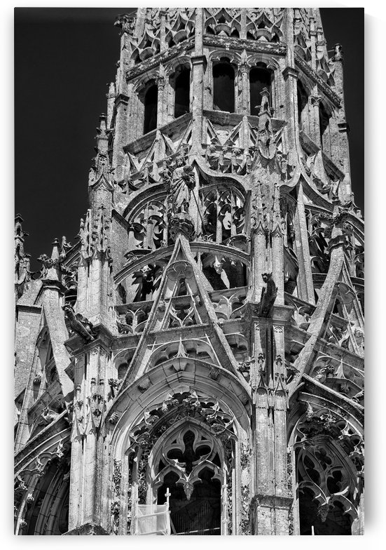 Chartres Cathedral by Douglas Kay