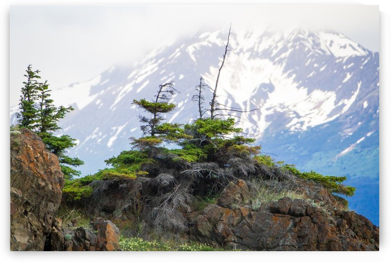 Alaska Scenery Pictures - Cliffs and Mountains by 3Quarters Images