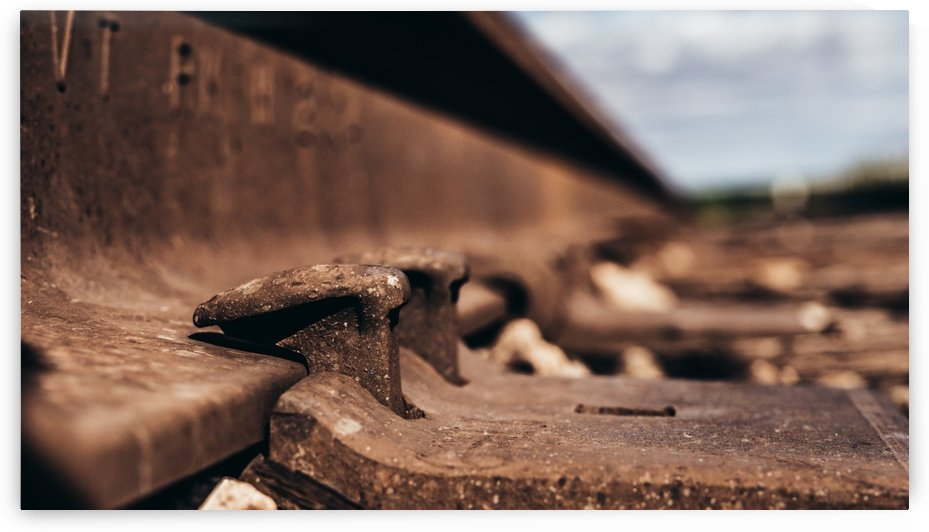 Railroad nails by CWarren