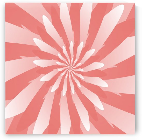 Flower Spiral Pattern  by rizu_designs
