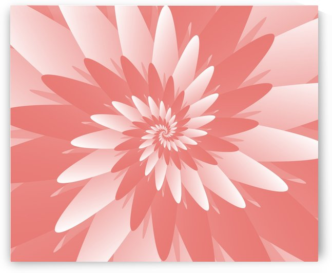 Spiral Flower Pattern Art by rizu_designs