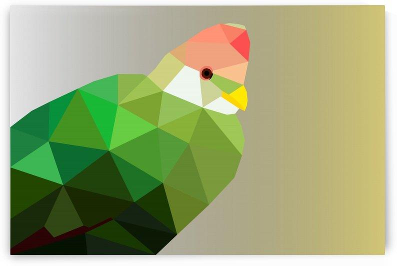 RED CRESTED TURACO LOW POLY ART by rizu_designs