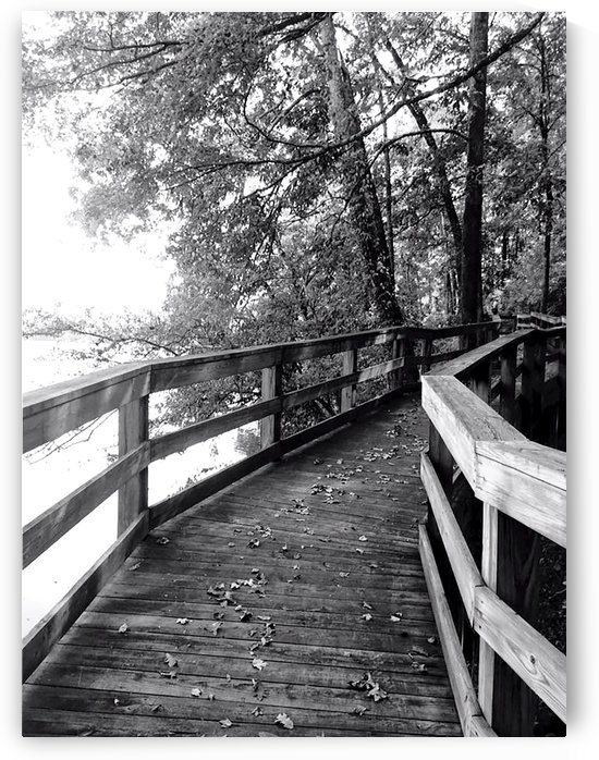 Walkway by Chanelle Sheets