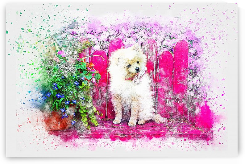CUTE WHITE DOG_OSG by One Simple Gallery