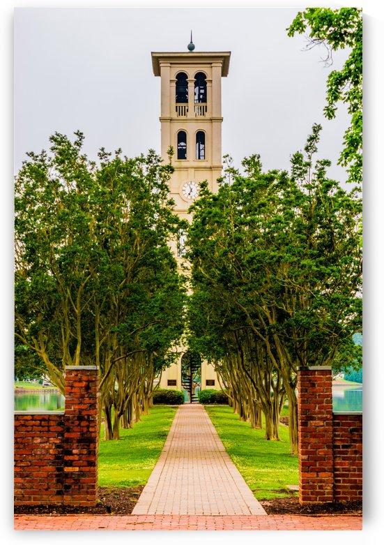 Furman University by Scott Gifford