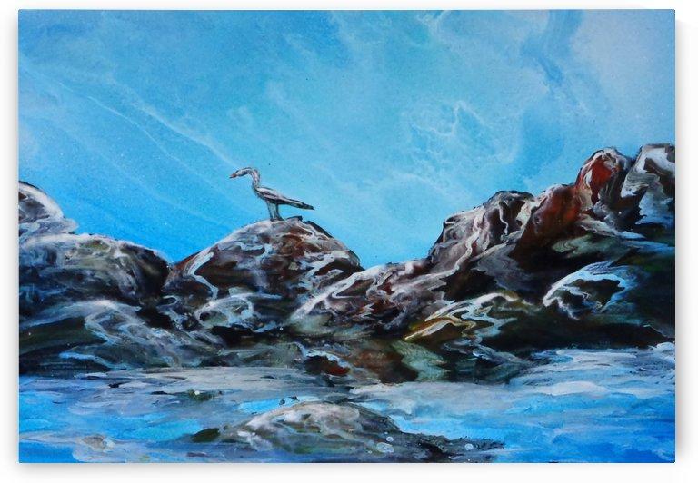 Seabird by Alisa Amor