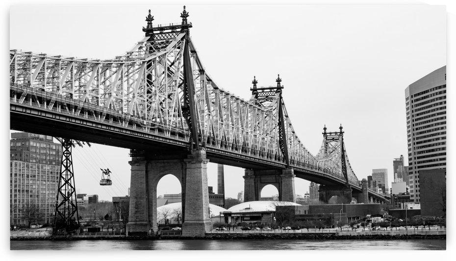 Bridge by Senn