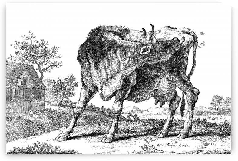 The Cow_OSG by One Simple Gallery