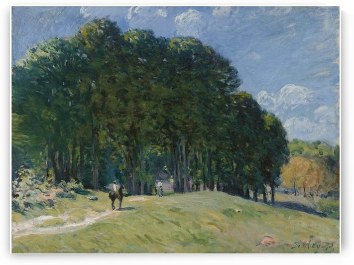 Edge of the Forest by Alfred Sisley