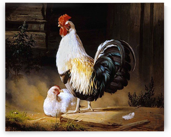 Rooster And Hen_OSG by One Simple Gallery