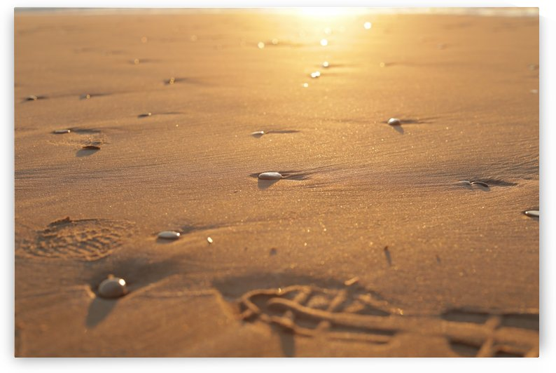 Pebble stones and footsteps on sand sunrise by Danial Daoud