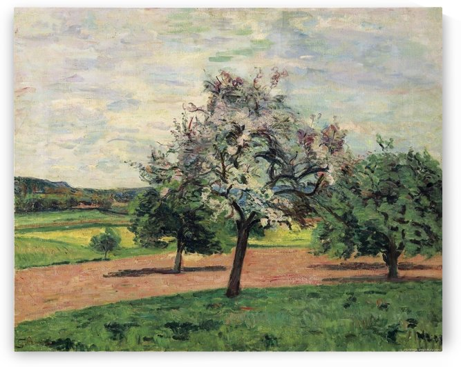 Apple Trees Blooming, Ile-de-France by Armand Guillaumin