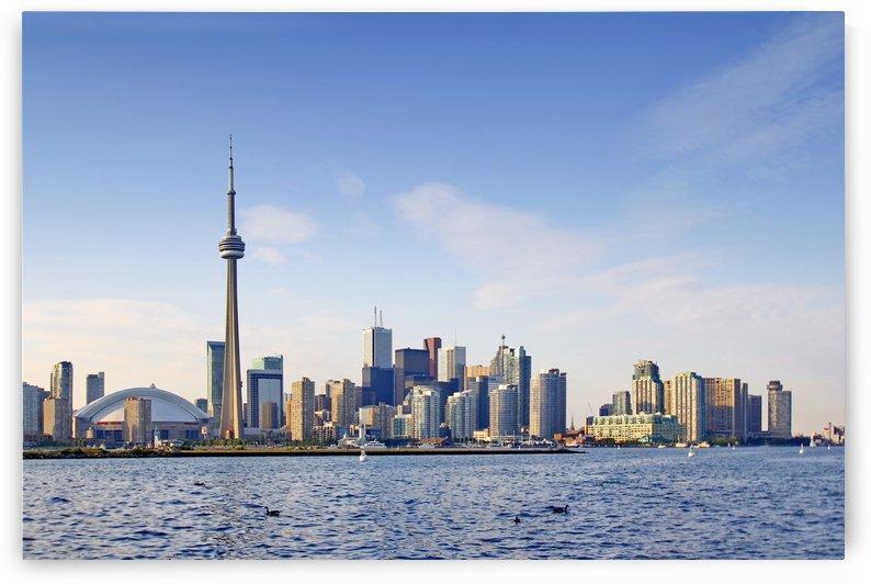 View Toronto from Toronto Island by zoltanduray